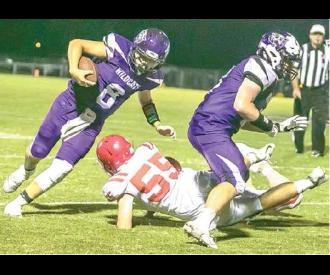 Wildcats shut out at home